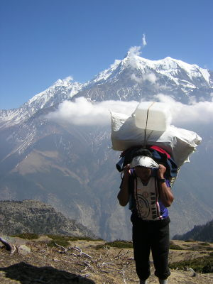 Dorje Sherpa carrying part of the load up to Yak Karka